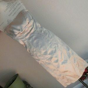 Strapless Bodycon Satin Dress